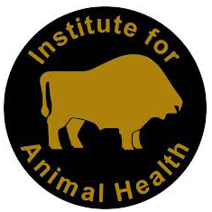 Institute Animal Health